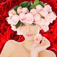 玫瑰の花语