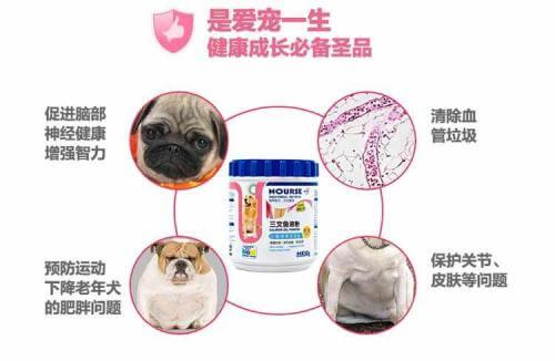 宠幸宠物用品加盟流程